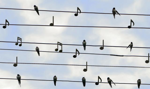 Afbeelding van Muzieklerares leert studenten EFT.